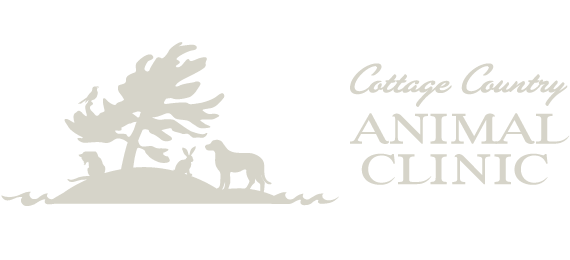 Cottage Country Animal Clinic